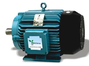 Crompton Greaves Energy Efficient Motors Mumbai